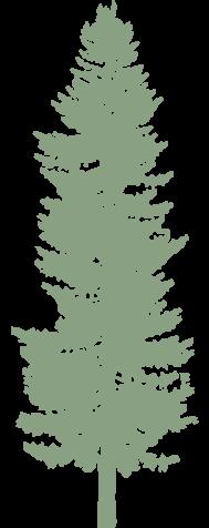 paysagiste Auribeau-sur-Siagne-creation de jardin Antibes-système d arrosage Biot-entretien de jardin Theoules-elagage Grasse-architecte paysagiste Mougins